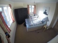 Edit Large double room with a view over Fishpond Park in a 2-bedroom flat