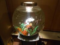 Aquarium with stand 60 litre Biorb with loads of extras full tropical set up