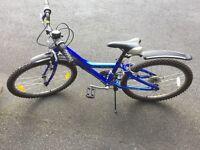 GIANT mtx 225 kid's bicycle