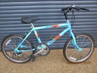 BOYS RALEIGH REBEL LIGHTWEIGHT TRADITIONAL BIKE IN VERY GOOD USED CONDITION..(SUIT APPROX. AGE. 7+).