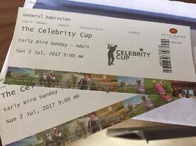 Celebrity cup, celtic manor Newport x2