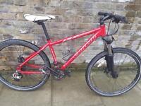 Carreiro mountain bike