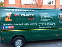 Professional Dog walking, day care and home boarding services in South Manchester