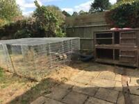 Giant rabbit run and hutch
