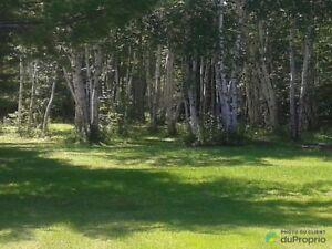 60 000$ - Terrain résidentiel à vendre à St-Félicien