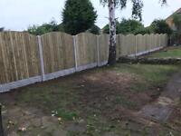 Fence panel Arched Vertilap