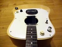 """""""Vintage Style Custom Dog, Acoustic Guitar With Fender Replacement Hardware"""""""