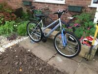 Ladies Apollo XC26 Bike