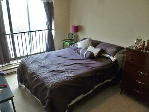 Time Square Peterborough Bachelor Apartment for Rent: Ashburnham