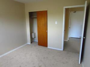 Old South London Bright & Spacious 1 Bedroom Apartment for Rent London Ontario image 6
