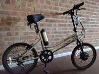 Viking electric bike