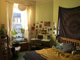 Flatmate wanted for superb Canaan Lane flat - available Sunday April 1st.