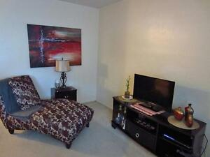 Old South London Bright & Spacious 1 Bedroom Apartment for Rent London Ontario image 14