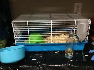 Hamster cages and bedding