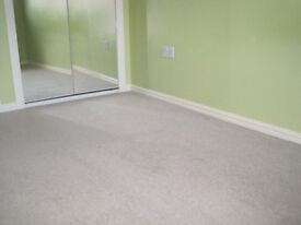 Beige wool 80/20 twist pile carpet