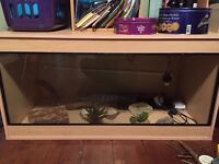 5' x 3' x 3' Vivarium and all accessories!