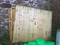 3 Good Condition Closed Panel Fences 5ft x 6ft