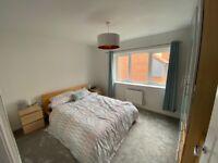 Double IKEA Malm Bed frame, no mattress, one broken slat
