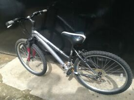 Ladies Mountain Bike