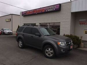 2012 Ford Escape XLT LOCAL TRADE Windsor Region Ontario image 2