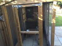 Cattery/ cat kennel/ run 8 x 4