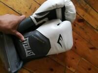 Boxing gloves EVERLAST offer price