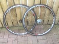 A PAIR OF PINARELLO WHEELS FOR SALE.