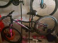 Ladies specialize mountain bike