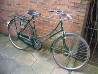 hi bird shakti vintage ladies bicycle