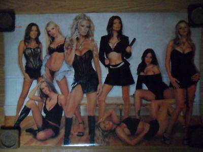Sexy Girl Dorm Poster ~ VIVID Video Porn Stars Jenna Jameson Devon Tera & -
