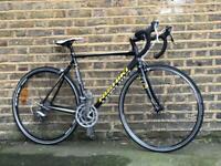 Road bike Nishiki Criterium| Medium frame size| Carbon forks