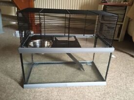 Two level glass hamster cage with accessories