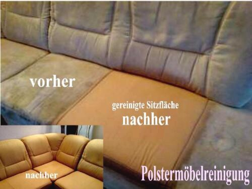 sofa reinigung polsterreinigung teppichbodenreinigung matratzen in hannover nord ebay. Black Bedroom Furniture Sets. Home Design Ideas