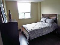 Hamilton 1 bedroom Apartment for Rent: Easy bus McMaster, Mohawk