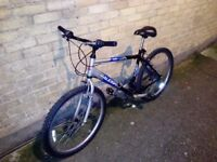 Raleigh Bike for sell, excellent conditions