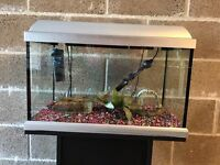 2 ft fish tank 60l full set up with stand heater light lid filter gravel ornament all work in pic