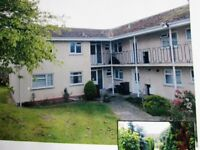 One bed Flat available to rent