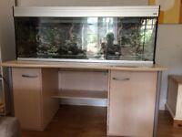 5ft (150cm) Fish Tank / Aquarium. inc cabinet, filter, heater etc. £400 ono