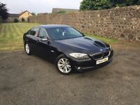 BMW 520d se efficient dynamic