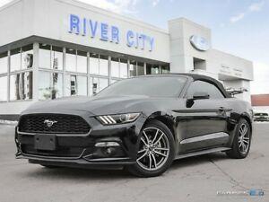 "2017 Ford Mustang Premium"" INCLUDES FREE YAMAHA HOME THEATER PKG"