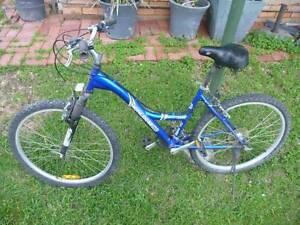 Mongoose Pro Mountain Bike Ladies Adult Rockadile Magill Campbelltown Area Preview