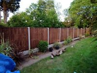 Close board fence panel 6ft x 5ft set for only £89