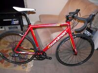 Boardman Road Sport Bike 55.5cm