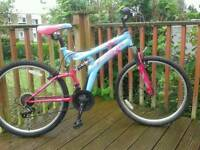 Adults FULL suspension Mountain Bike, DS-Special Edition,26 in wheels, Great tyres, brakes, 15 Speed