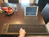 Roli Seaboard RISE 49 with box and gig bag