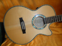 epiphone performer, new electro acoustic