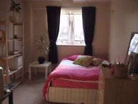 Good size double room i a friendly flatshare, 2 mins from Battersea Park