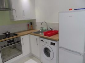 fully furn exec 2 bed apt city ctr, L8 1TE, all utility bills & wifi incl, private court yard nice!