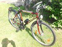 Neu Fahrrad Mountain Bike 26 Zoll , 18 Gang Shimano Rheinland-Pfalz - Waldböckelheim Vorschau