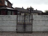 wrought iron gate / garden gate / metal gate / steel gate / house gate / side gate / driveway / gate